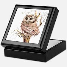 Cute Baby Saw Whet Owl Watercolor Bird Keepsake Bo