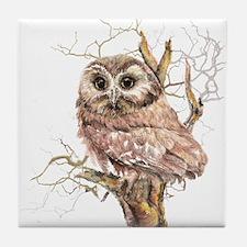 Cute Baby Saw Whet Owl Watercolor Bird Tile Coaste