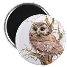 Cute Baby Saw Whet Owl Watercolor Bird Magnet