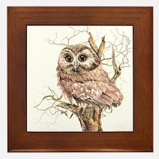 Cute Baby Saw Whet Owl Watercolor Bird Framed Tile