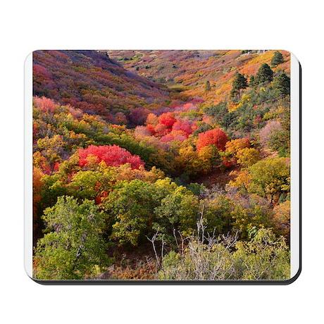 Mousepad - Autumn Nogal Canyon