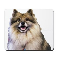 Keeshond Head Shot Mousepad