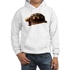 Unique Cute turtle Hoodie