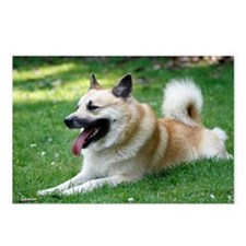 Icelandic Sheepdog Postcards (Package of 8)