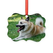 Icelandic Sheepdog Picture Ornament