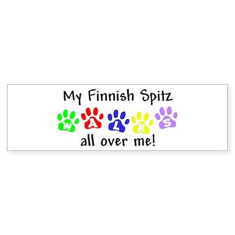 Finnish Spitz Walks Bumper Sticker