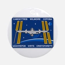 Expedition 42 Ornament (round)