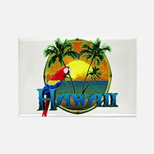 Hawaiian Sunset Rectangle Magnet (10 pack)