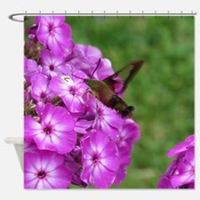 Hummingbird Clearwing Shower Curtain