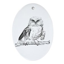 Wise Owl Oval Ornament