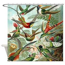 Beautiful Hummingbirds Art Shower Curtain