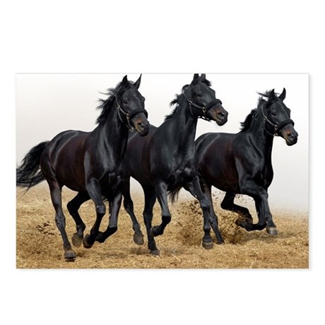 3 Black Horses Running Postcards (Package of 8)