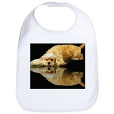 Cocker Reflection Bib