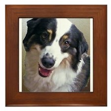 Painted Aussie Head Framed Tile
