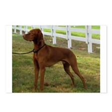 Painted Standing Vizsla Postcards (Package of 8)