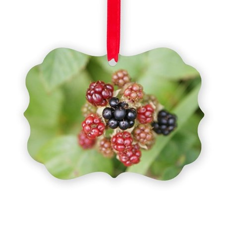 Berries Picture Ornament