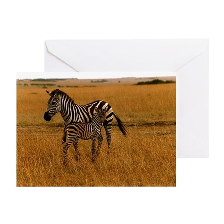 African Zebra & Baby Greeting Cards (Pk of 10)