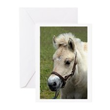 """Fjord Foal 2"" Greeting Cards (Pk of 10)"