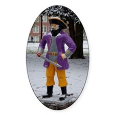 Snow Pirate Decal