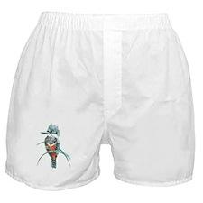 Watercolor Painting Kingfisher Bird Boxer Shorts