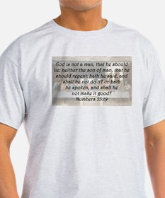 Numbers 23:19 T-Shirt