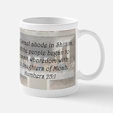 Numbers 25:1 Mug
