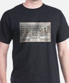 Numbers 11:12 T-Shirt
