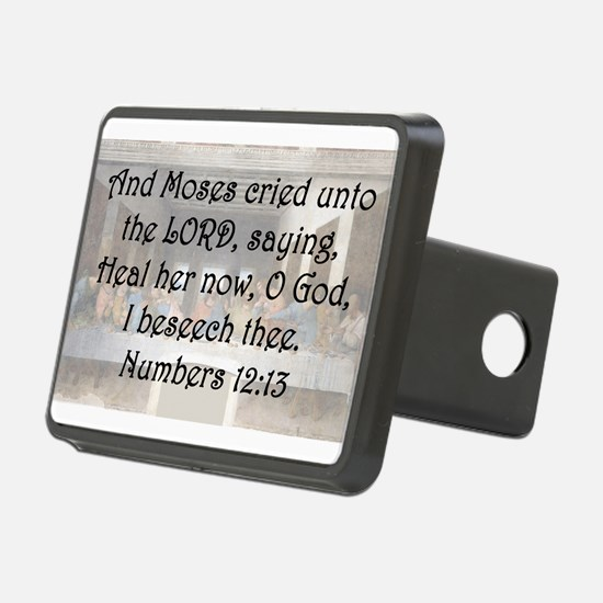 Numbers 12:13 Hitch Cover
