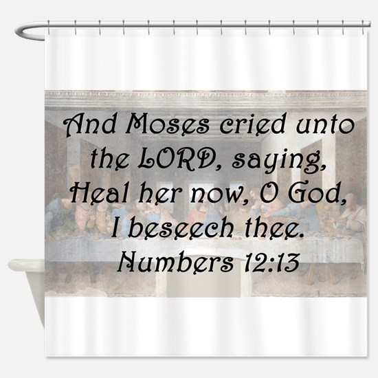 Numbers 12:13 Shower Curtain