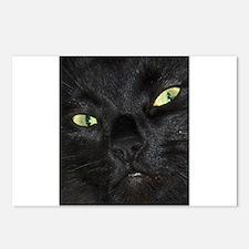 cat familer Postcards (Package of 8)