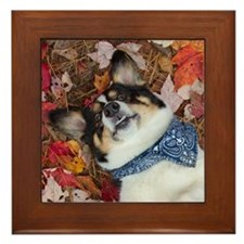 Funny, Cute, Corgi Look Framed Tile