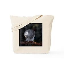 Timneh African Grey Tote Bag