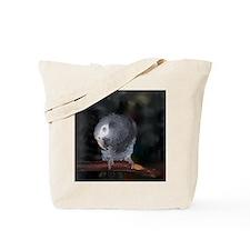 Timneh Africn Grey Tote Bag