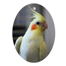 cockatiel Oval Ornament