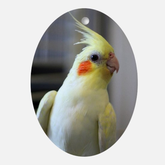 cockatiel Oval Ornament
