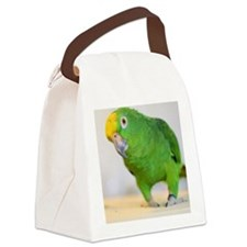 amazon Canvas Lunch Bag