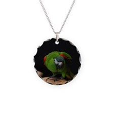 hahn's macaw Necklace