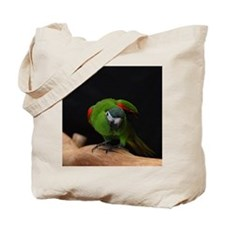 hahn's macaw Tote Bag