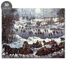 Central Park in Winter Puzzle