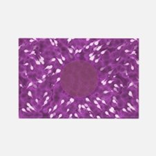 Little Swimmers - Pink Rectangle Magnet
