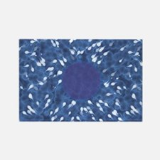 Little Swimmers - Blue Rectangle Magnet