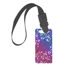 Little Swimmers - Blue/Pink Luggage Tag