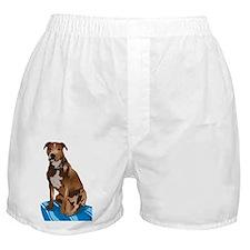 Pitbull Brown nbg Boxer Shorts