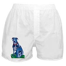 Blue Pit no background Boxer Shorts