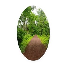 Trail in the Woods Oval Car Magnet