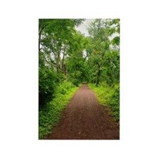 Trail in the Woods Rectangle Magnet