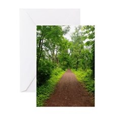 Trail in the Woods Greeting Card