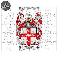 Nolan Family Crest Puzzle