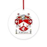 OMeighan-Irish-9.jpg Ornament (Round)