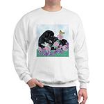 Newfoundland Puppy Sweatshirt
